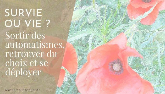 Read more about the article Survie ou vie ? Retrouver du choix pour se déployer.